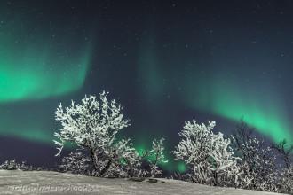 'Frozen Nightscapes' – Noorderlicht- & Nachtfotografiecursus in het hoge noorden