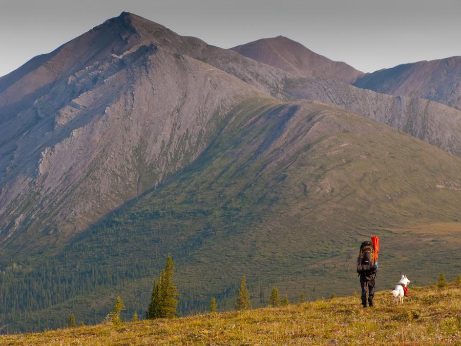 Dwars door de Yukon Territories