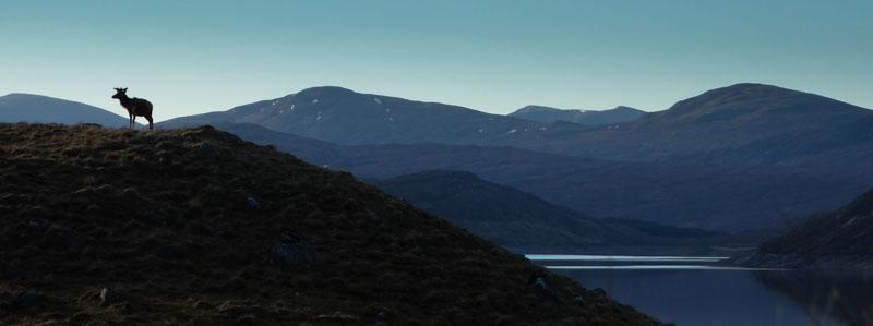 Dag 40 – Het verhaal achter de lege Highlands