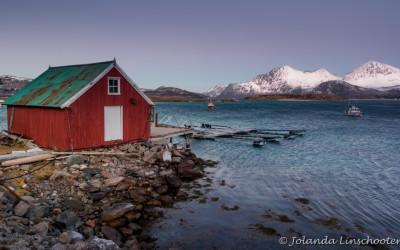 Kattfjorden